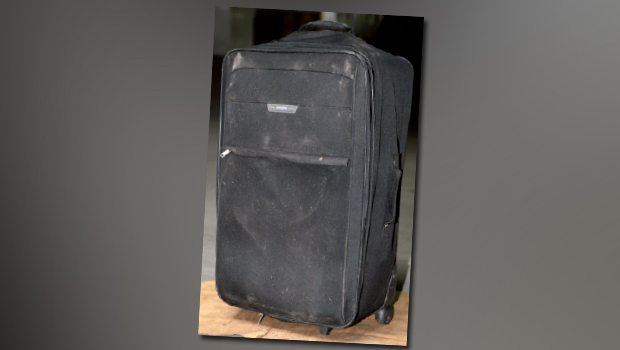 Valizdeki ceset Norveç'li turiste ait