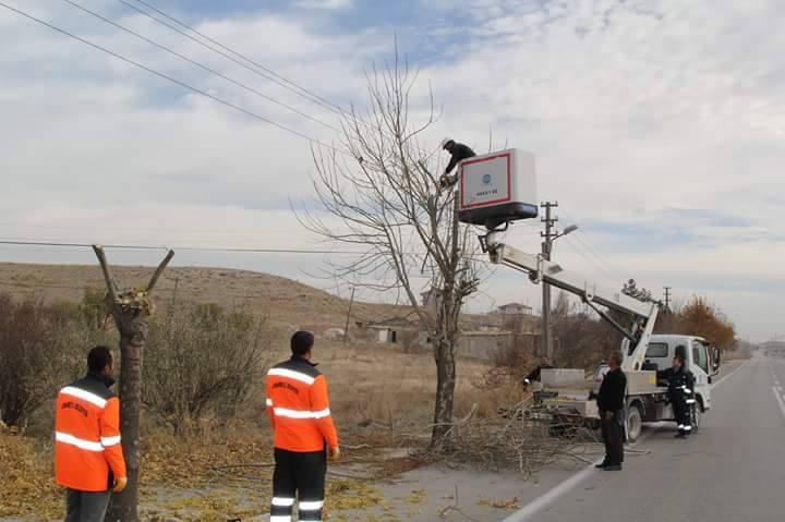 Cihanbeyli Belediyesi'nde ağaç budama çalışmaları başladı