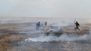 Tarla Yangını 500 Dekar Alan Kül Oldu