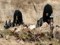PKK çekilirken TSK ne yapacak?