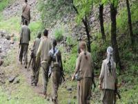 PKK: Suriye'ye gitmeyeceğiz!
