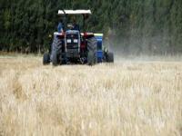 Yeniceoba'da Çifçiye Mahsul İadesi Dağıtılıyor