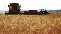 """""""Tüm dünyada 200 milyon dönüm mısır, soya, buğday ekilmeli"""""""