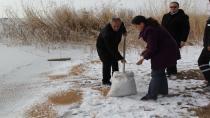 Cihanbeyli Belediyesi Doğadaki kuşlara yem bıraktı