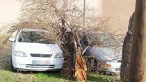 Konya'da şiddetli rüzgarda ağaç, direk ve kamyonet devrildi